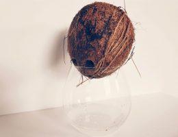 Hoe maak je een kokosnoot open?