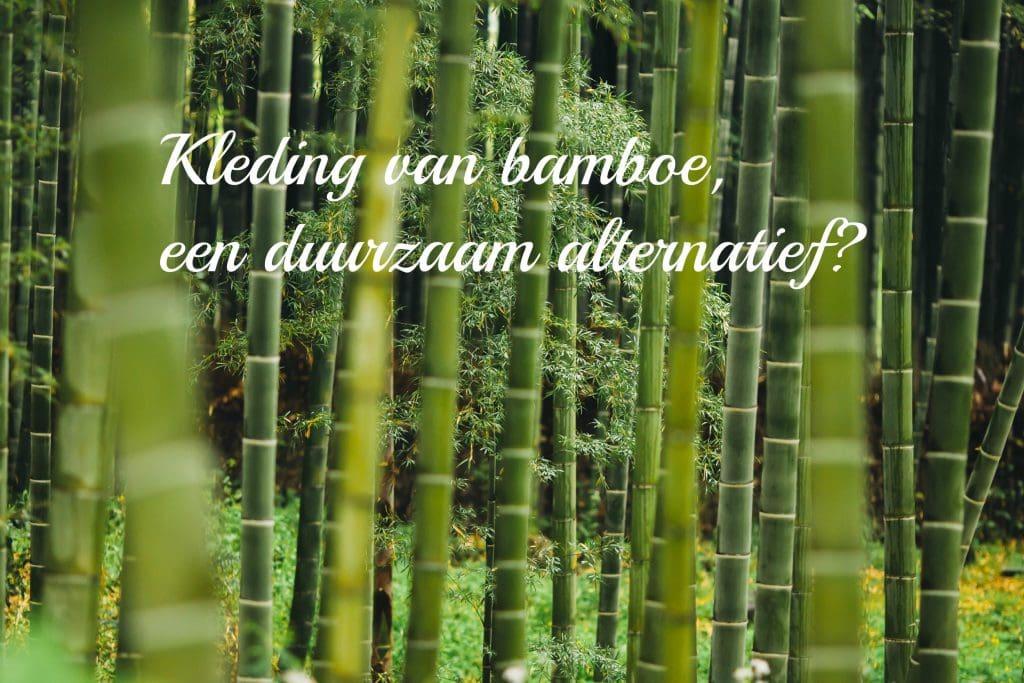 kleding bamboe - Kleding van bamboe, een duurzaam alternatief?