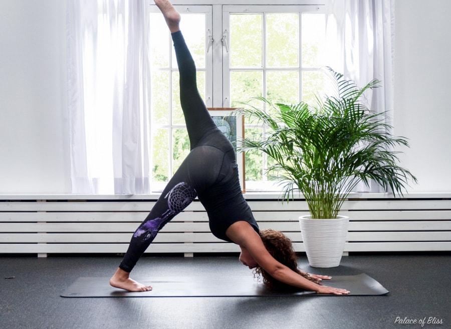 Internationale yoga dag 2017