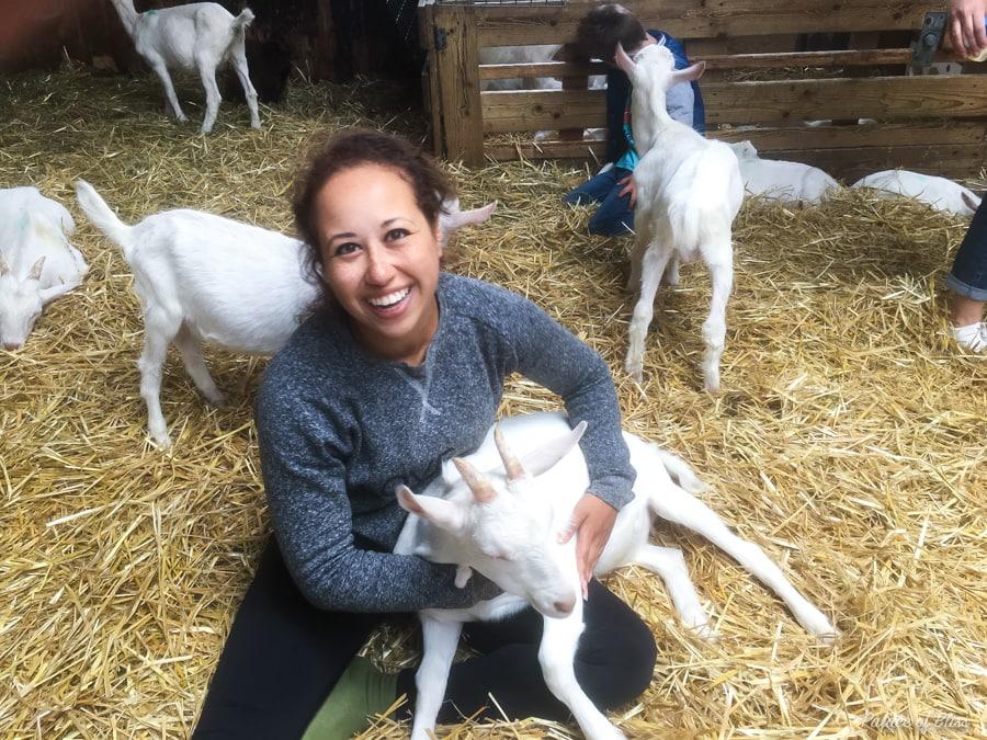 IMG 9220 - Knuffelen met geiten tijdens de geitenyoga