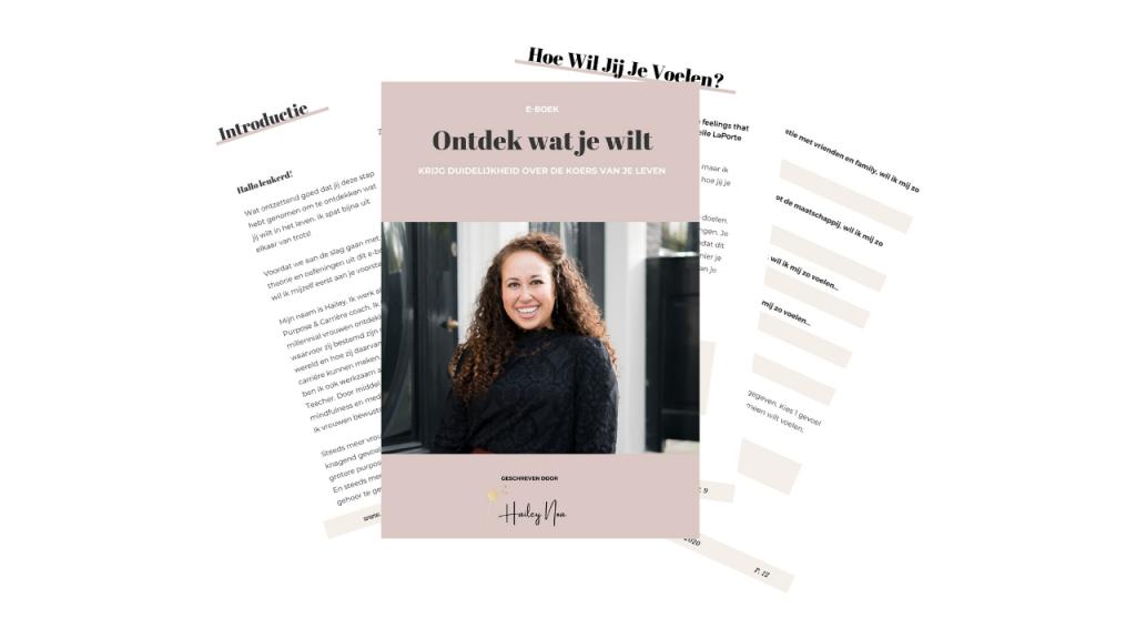 E book Ontdek Wat Je Wilt hero - Hoe ontdek je wat je wilt?